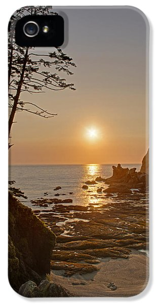 Oregon Coast iPhone 5 Cases - Sunset de Agave iPhone 5 Case by Mike Reid