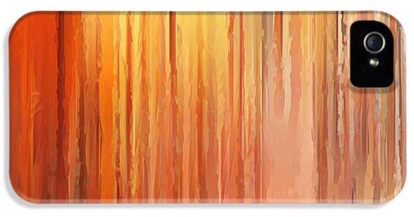 Burnt Umber iPhone 5 Cases - Sunset Infinity iPhone 5 Case by Lourry Legarde