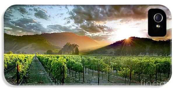 Wine Country IPhone 5 / 5s Case by Jon Neidert