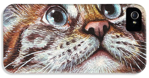Animals iPhone 5 Cases - Surprised Kitty iPhone 5 Case by Olga Shvartsur