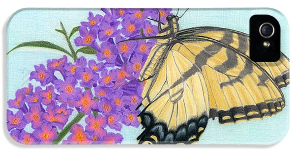 Swallowtail iPhone 5 Cases - Swallowtail Butterfly And Butterfly Bush iPhone 5 Case by Sarah Batalka