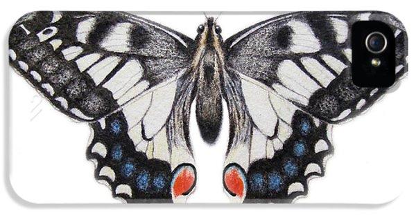 Swallowtail iPhone 5 Cases - Swallowtail iPhone 5 Case by Ele Grafton
