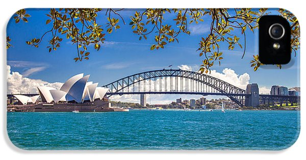 Harbour iPhone 5 Cases - Sydney Harbour Skyline 2 iPhone 5 Case by Az Jackson