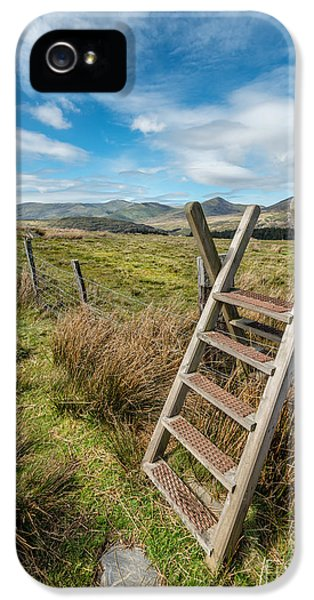 Ladder iPhone 5 Cases - Take The Path iPhone 5 Case by Adrian Evans