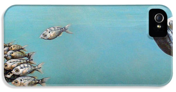 Underwater iPhone 5 Cases - Tampa Bay Tarpon iPhone 5 Case by Joan Garcia