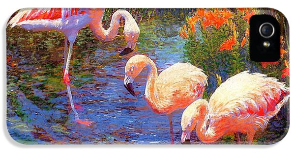 Colourful iPhone 5 Cases - Tangerine Dream iPhone 5 Case by Jane Small