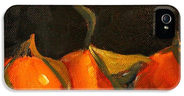 Tangerine iPhone 5 Cases - Tangerine Party iPhone 5 Case by Nancy Merkle