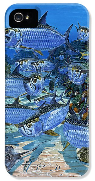 Tarpon Alley In0019 IPhone 5 / 5s Case by Carey Chen