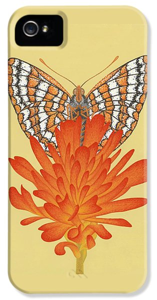 Taylor's Checkerspot  IPhone 5 / 5s Case by Nathan Marcy