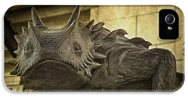 Bronze iPhone 5 Cases - TCU Horned Frog iPhone 5 Case by Joan Carroll