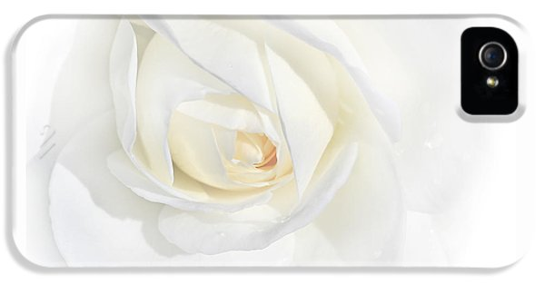 Ivory Rose iPhone 5 Cases - Tears White Rose Flower iPhone 5 Case by Jennie Marie Schell