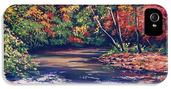 Baptism iPhone 5 Cases - Tennessee Stream in the Fall iPhone 5 Case by John Clark