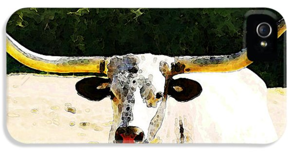 Chicago Bulls iPhone 5 Cases - Texas Longhorn - Bull Cow iPhone 5 Case by Sharon Cummings
