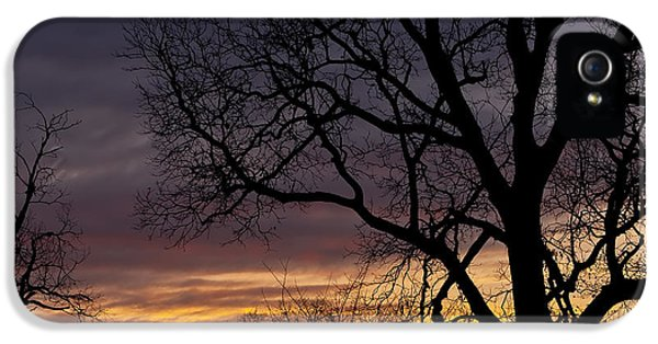 Sillouette iPhone 5 Cases - Texas Sky iPhone 5 Case by Wayne Kondoff