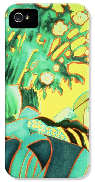 Sofa iPhone 5 Cases - The Artist Reflected Watercolour iPhone 5 Case by Lillian Delevoryas