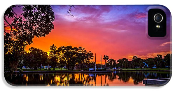 Bayou iPhone 5 Cases - The Bayou iPhone 5 Case by Marvin Spates