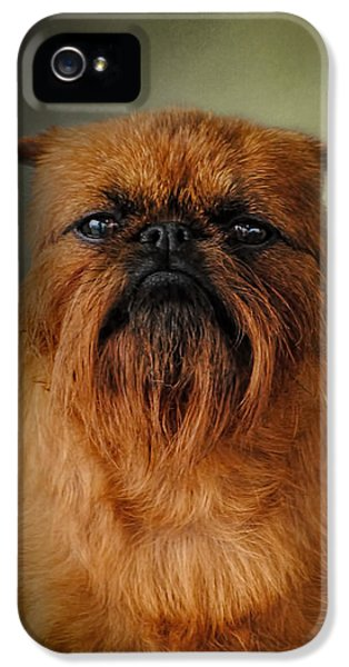 The Brussels Griffon IPhone 5 / 5s Case by Jai Johnson