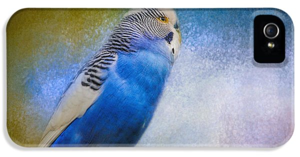 The Budgie Collection - Budgie 2 IPhone 5 / 5s Case by Jai Johnson
