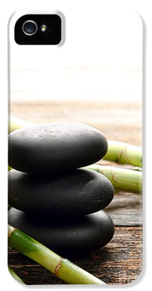 The Cairn And The Bamboo IPhone 5 / 5s Case by Olivier Le Queinec