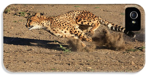 The Chase IPhone 5 / 5s Case by Donna Kennedy