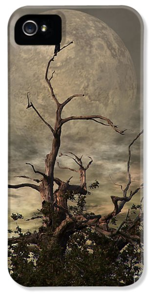 Horror iPhone 5 Cases - The Crow Tree iPhone 5 Case by Isabella Abbie Shores