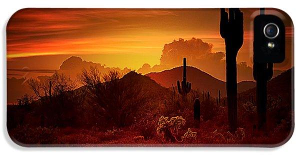 The Essence Of The Southwest IPhone 5 / 5s Case by Saija  Lehtonen