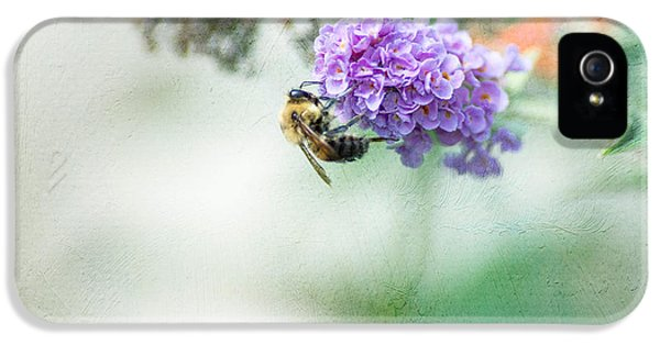 Bee iPhone 5 Cases - The Last Drop iPhone 5 Case by Rebecca Cozart