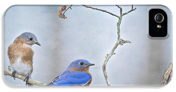 The Presence Of Bluebirds IPhone 5 / 5s Case by Bonnie Barry