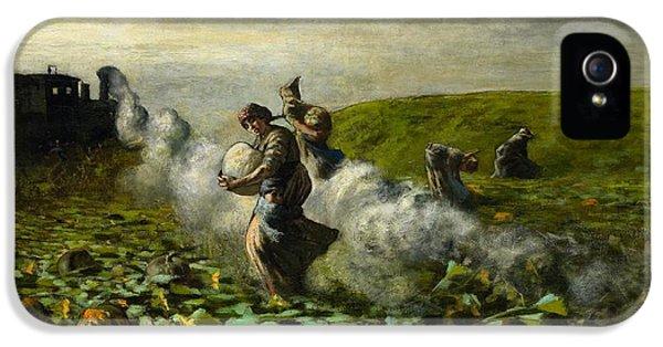 The Pumpkin Harvest IPhone 5 / 5s Case by Giovanni Segantini