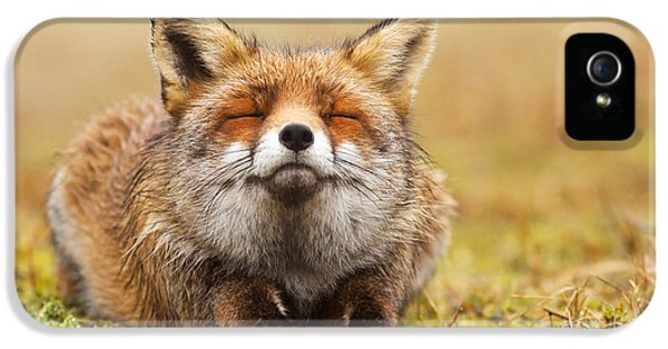 Red Fox iPhone 5 Cases - The Smiling Fox iPhone 5 Case by Roeselien Raimond