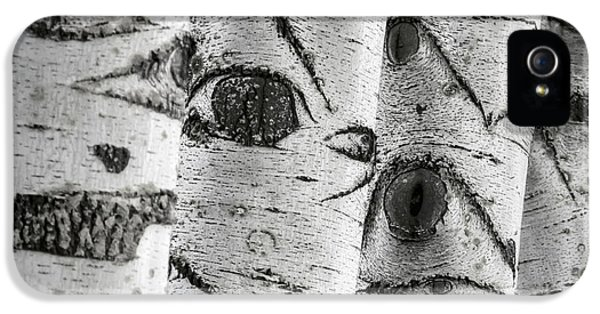 Knot iPhone 5 Cases - The Trees Have Eyes iPhone 5 Case by Wim Lanclus