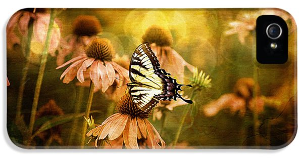 Cone Flowers And Butterflies iPhone 5 Cases - The Very Young At Heart iPhone 5 Case by Lois Bryan