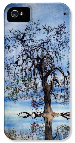Wish iPhone 5 Cases - The Wishing Tree iPhone 5 Case by John Edwards