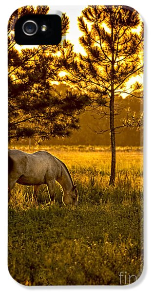 Farmland iPhone 5 Cases - This Old Friend iPhone 5 Case by Marvin Spates