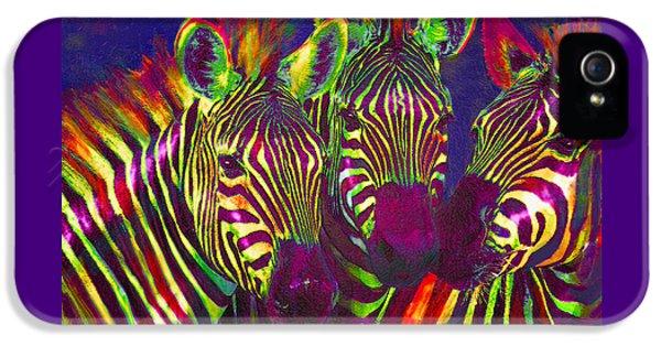 Three Rainbow Zebras IPhone 5 / 5s Case by Jane Schnetlage