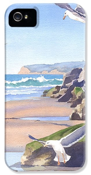 Three Seagulls At Coronado Beach IPhone 5 / 5s Case by Mary Helmreich