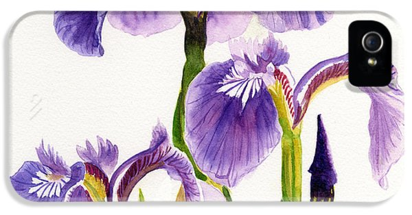 Three iPhone 5 Cases - Three Wild Irises Square Design iPhone 5 Case by Sharon Freeman