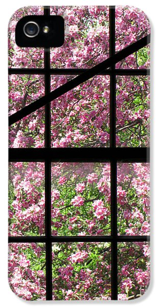 Window iPhone 5 Cases - Through an Old Window iPhone 5 Case by Olivier Le Queinec