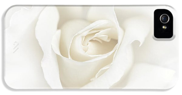 Ivory Rose iPhone 5 Cases - Misty Ivory White Rose Flower iPhone 5 Case by Jennie Marie Schell