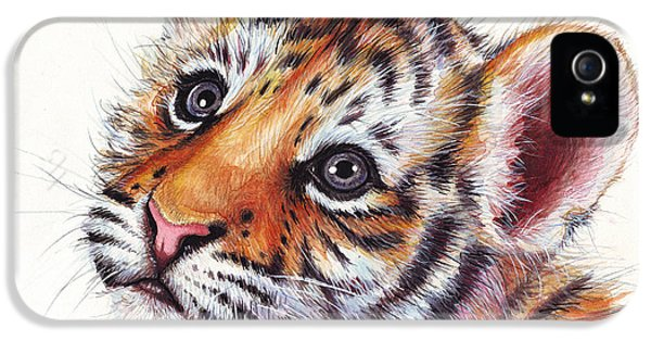 Tiger Cub Watercolor Painting IPhone 5 / 5s Case by Olga Shvartsur