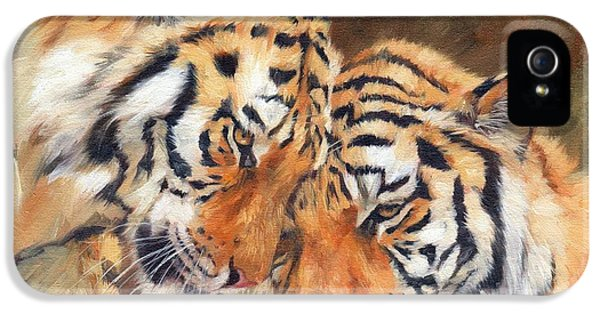 Tiger Love IPhone 5 / 5s Case by David Stribbling