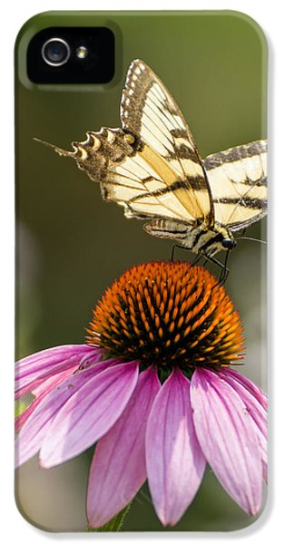 Cone Flowers And Butterflies iPhone 5 Cases - Tiger Striped Butterfly Vertical iPhone 5 Case by Photographic Arts And Design Studio