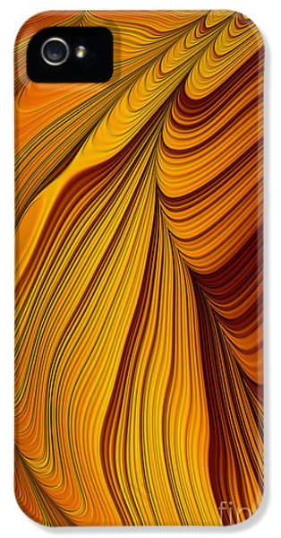 Creativity iPhone 5 Cases - Tigers Eye Abstract iPhone 5 Case by John Edwards