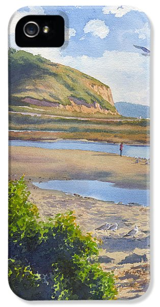 Torrey Pines Inlet IPhone 5 / 5s Case by Mary Helmreich
