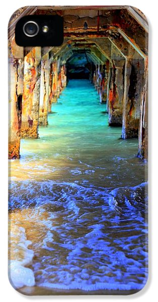 Tranquility IPhone 5 / 5s Case by Karen Wiles