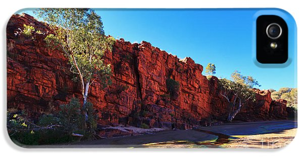 Mcdonnell iPhone 5 Cases - Trephina Gorge iPhone 5 Case by Bill  Robinson