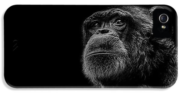 Trepidation IPhone 5 / 5s Case by Paul Neville