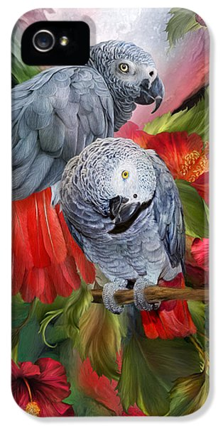 Tropic Spirits - African Greys IPhone 5 / 5s Case by Carol Cavalaris