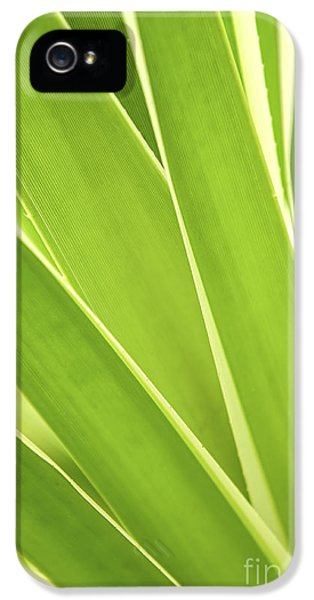 Leaf iPhone 5 Cases - Tropical leaves iPhone 5 Case by Elena Elisseeva