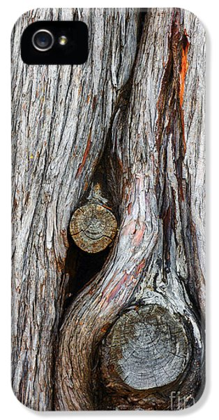 Knot iPhone 5 Cases - Trunk Knot iPhone 5 Case by Carlos Caetano